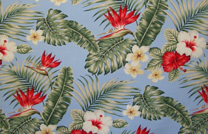 Hawaiian - Tropical Floral - Sky Blue