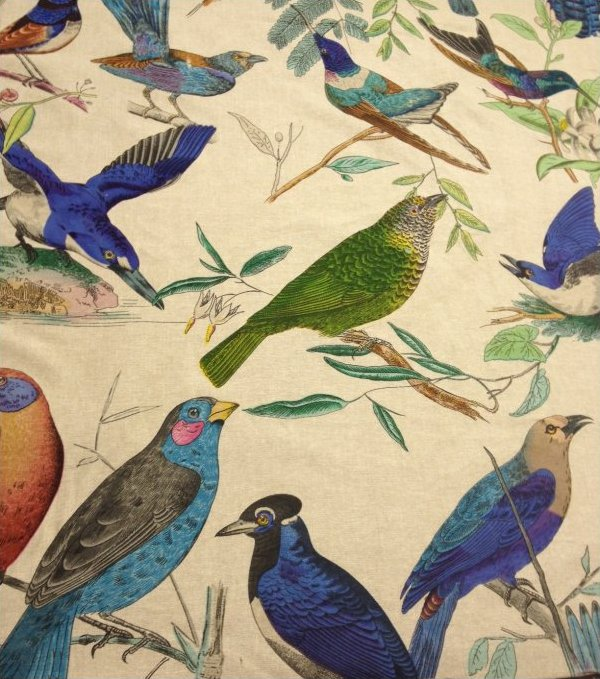 Aviary Illustration Brilliant Birds Hand Print On Linen
