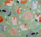 Adorable, affordable organic fabric from Alyssa Thomas' Critter Patch collection...