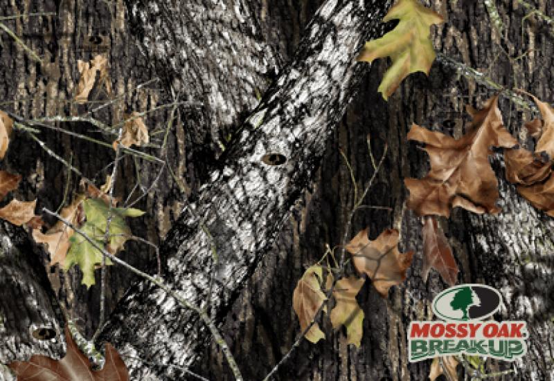 Mossy oak duck blind seat cover - compartment syndrome recovery time