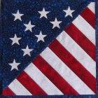 Mini quilt: Patriot