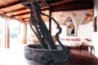 Anse Chastaner Tree Room