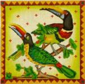 MS149CC Toucans