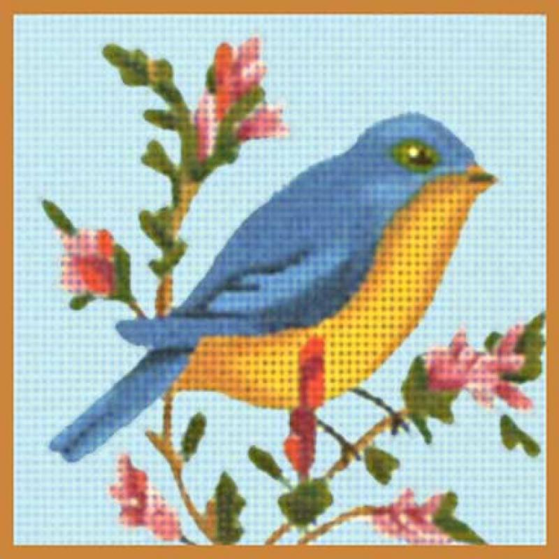 MSJ202C Blue/Yellow Bird