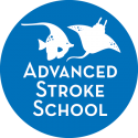 Advanced Stroke Group Lessons