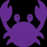 Private Swimming Crab