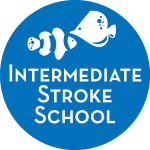 Intermediate Stroke School