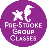 Pre-Stroke Group Classes