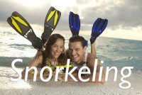 Learn to Snorkel