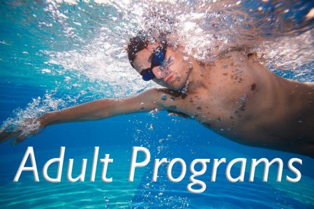 Adult Swim Programs