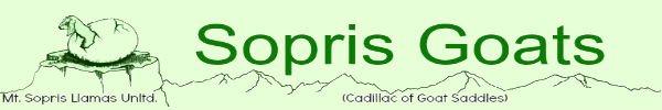 Mt Sopris Llamas Unltd.  (goat page)
