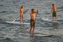 group paddle boarding