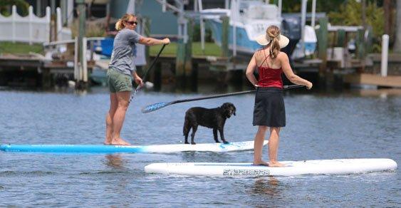 girls and dog sup