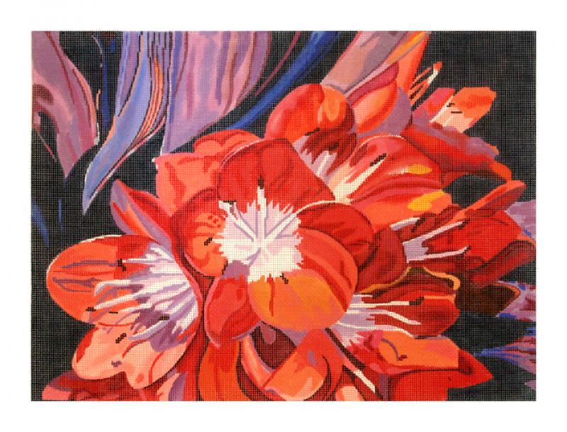 DH3603 - Gloria's Kaffir Lilies