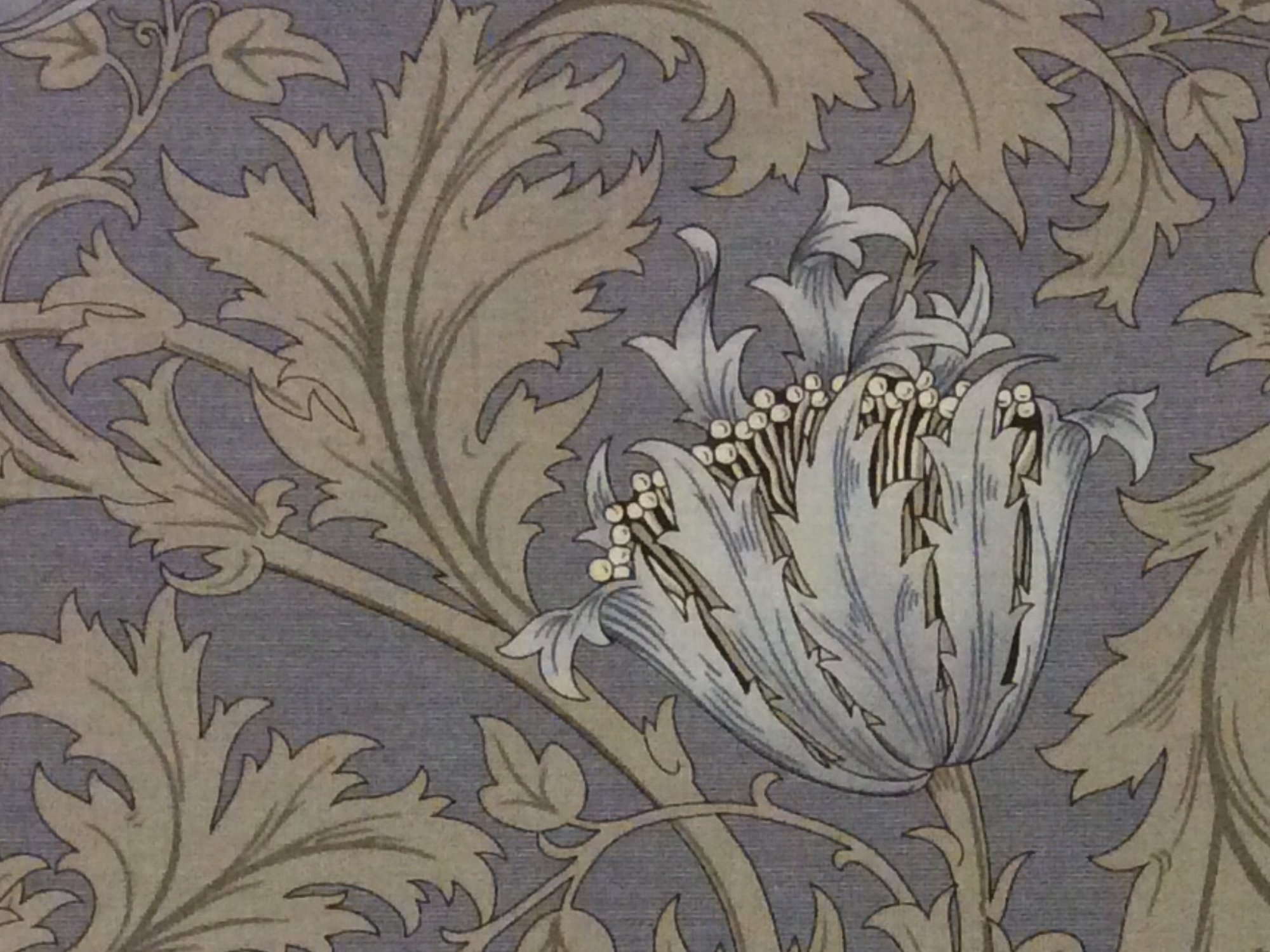 William Morris Brackman Liberty Style Floral Cotton
