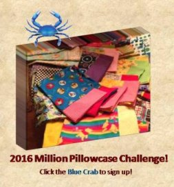 2016 Million Pillowcase Challenge