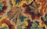 Phillip Jacobs-Variegated Leaves-PJ-39-BROWN