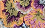 Phillip Jacobs-Variegated Leaves-PJ-39-Mauve
