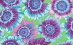 Phillip Jacobs-Painted Daisies-Rowan-PJ35-PINK