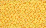 Brandon Mably-Sand Dollar-Yellow