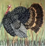 Vermont Turkey