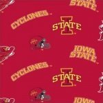 Iowa State University Cyclones ISU-045