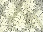 Lace Sheer Embroidered Floral Leaf Lace Ivory Curtain Fabric Drapery Fabric LDSO506