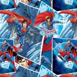 Arctic Warrior Multi Superman by Camelot Cottons