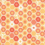Honey Honey - Apiary In Coral