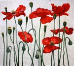 TTAP435 Red Poppies