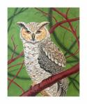 CL3640 - Great Horned Owl