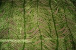 Peacock Plume Luxurious Cut Velvet Citrus Green Heavy Velvet Upholstery Fabric LHD151-B