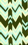 Amy Butler J11 Ritzy Stripe WIDE Home Dec Amy Butler Cotton Fabric