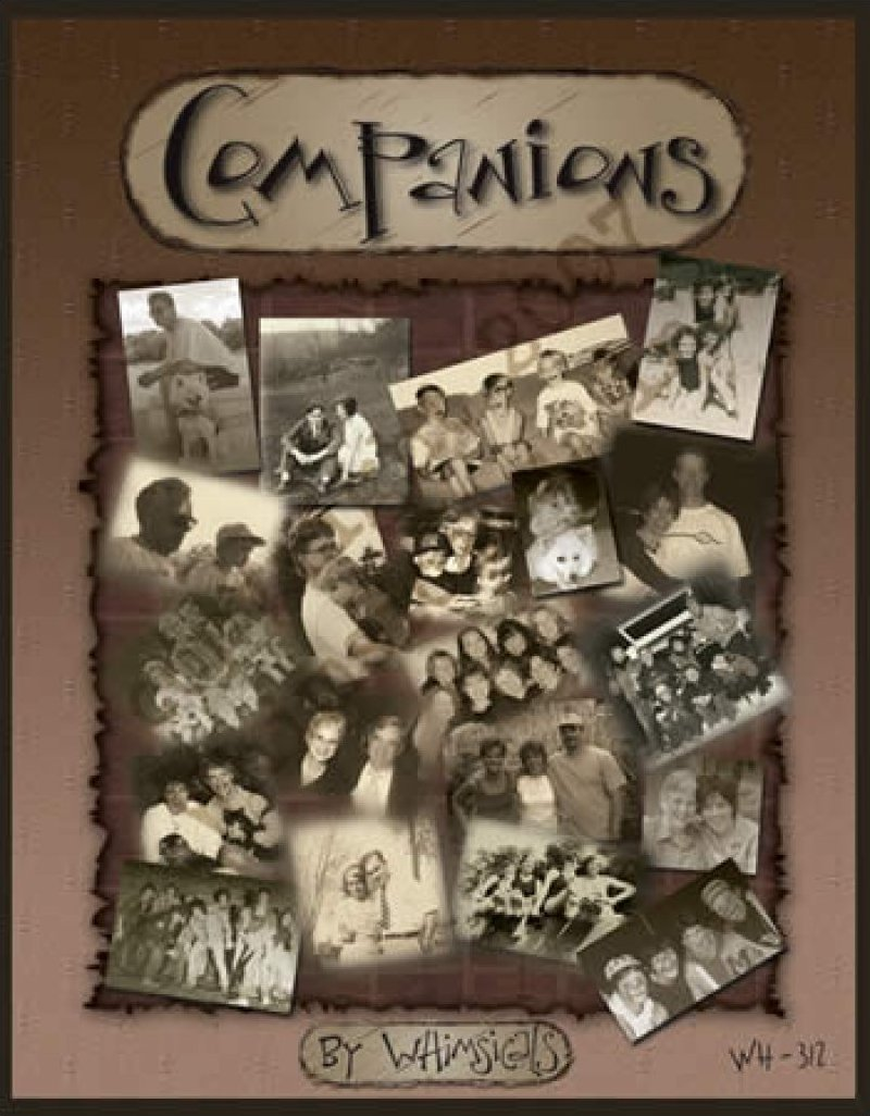 wh312 :: companions