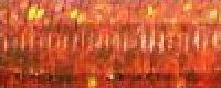 0027L Orangeruptis