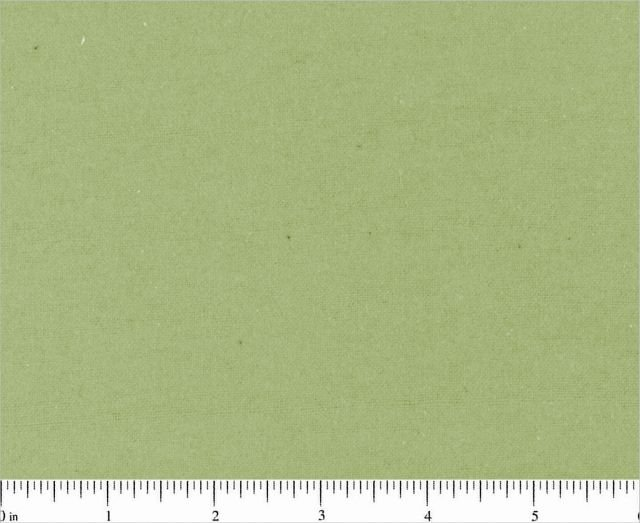 Solid Flannel  Sage  BD-23001-A19