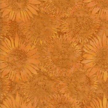 Honeysuckle KT07-N1