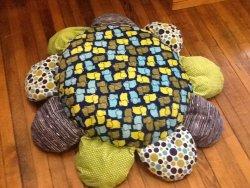 Shannon Cuddle fabric Daisy Pillow