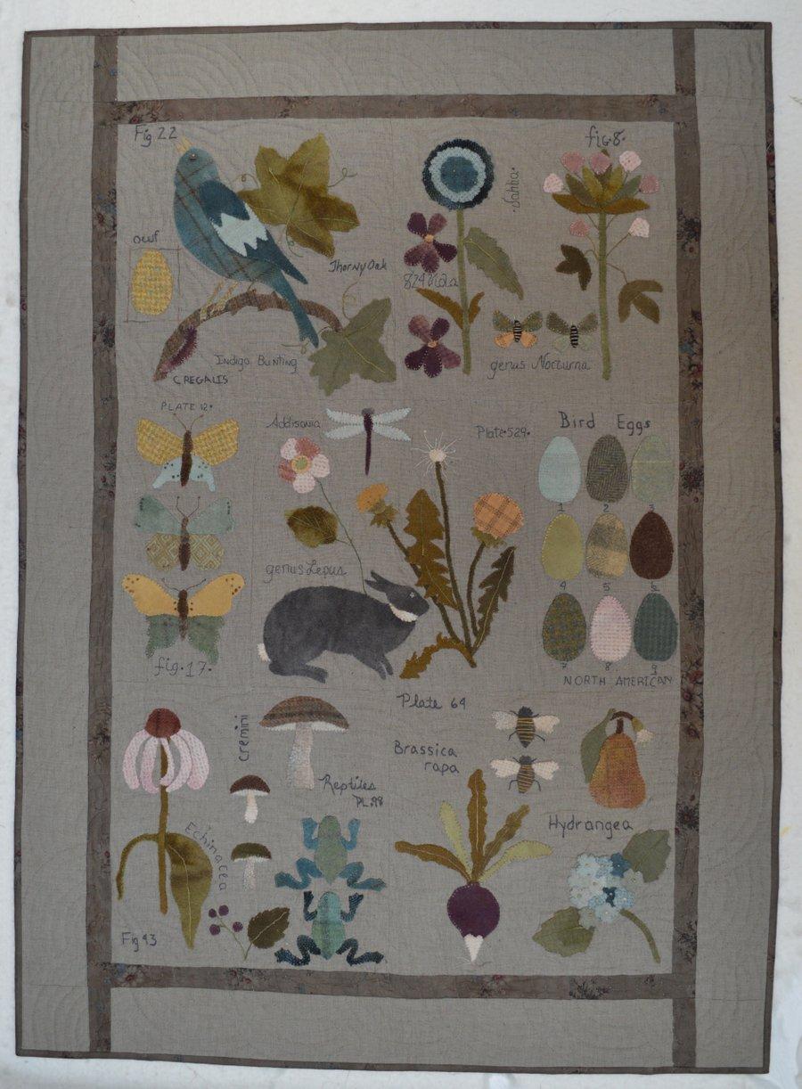 Botanical Sketchbook Pattern