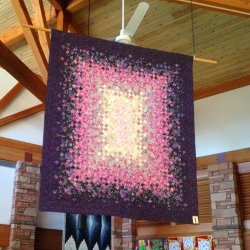 Library Quilt Show