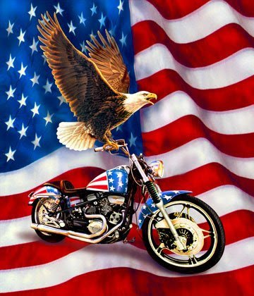 Motorcycle Panel