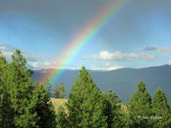 Daily photos of Montana at www.PatchworkQuiltsHamilton.com