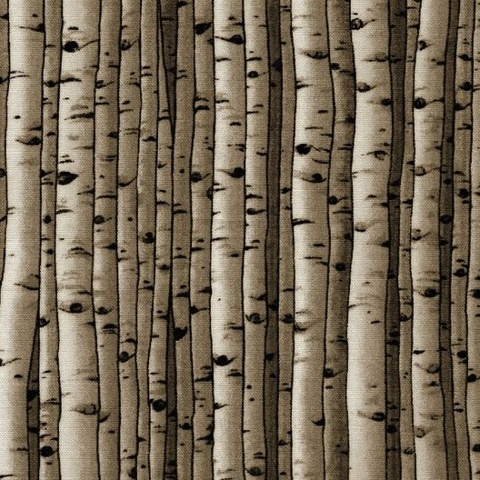 Brown Birch Trees - 5065-Wood