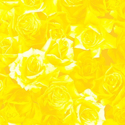 Yellow Roses - A7726Y