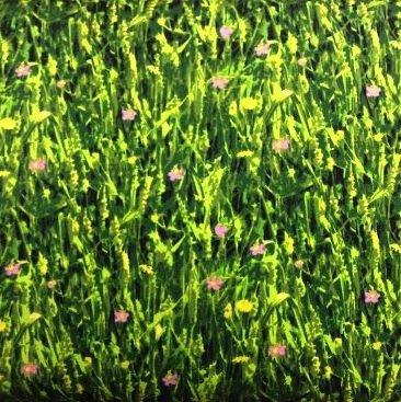 Meadow Landscape - BTR6320
