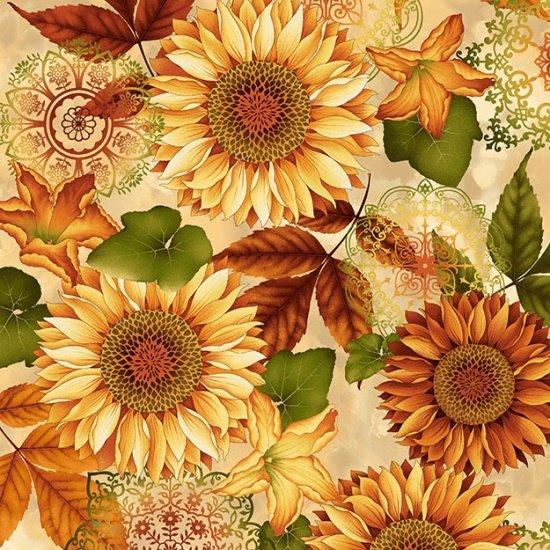Cream Sunflowers