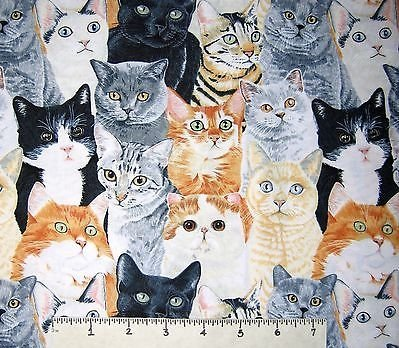 Cats - Pet Fabric - Packed Cats by Timeless Treasures