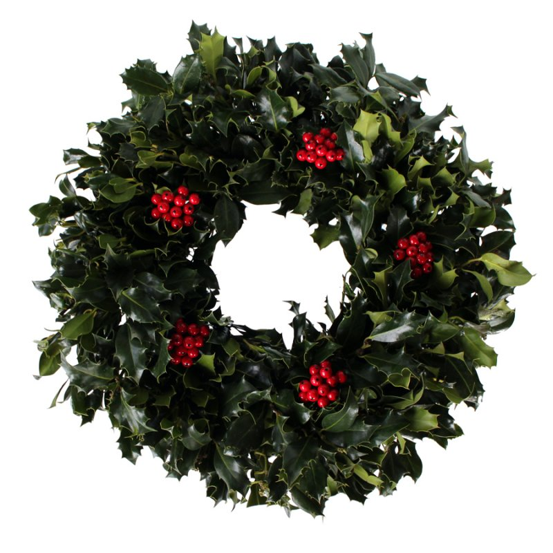 20 Green Holly Wreath