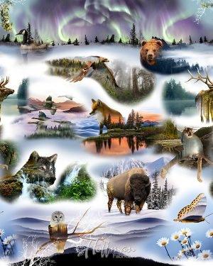Pristine Wilderness P4313 44