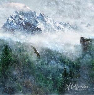 Aspen Mountain Eagle P4359 367